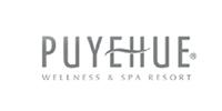 logos_hotelpuyehue